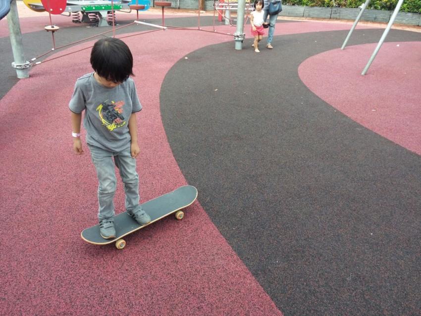 Puas main skateboard